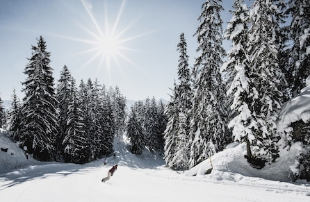 Stations de ski suisses 1